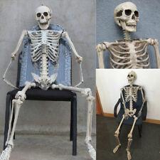 Halloween Prop Life Size Human Skull Skeleton Haunted House Decoration 5.57 feet
