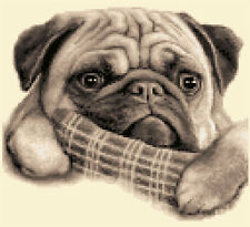 Pug Dog - Complete Counted Cross Stitch Kit With All Materials