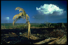589029 Cooled Lava Puu Oo Volcano In Background A4 Photo Print