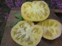 Tomate Weiß Tomesol - Heirloom - White Tomato 5+ Samen - RIESEN