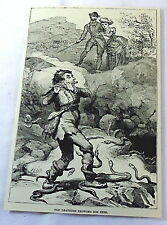 1886 magazine engraving ~ Old Leathers, Snake Charmer