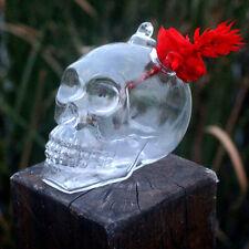 Plants Garden Flower Pot Skull Hanging Glass Vases Home Decoration