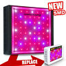 Mars Hydro 300w 400w 900w 1600w Led Grow Light Full Spectrum For Indoor Plant