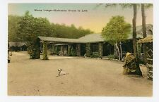 Stone Lodge & Dog—New Market VA Antique Shenandoah Valley—Hand-Colored 1920s