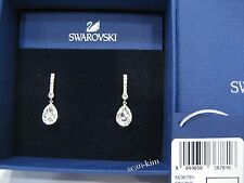 Swarovski Attention Pierced Earrings, Oval Silhouette, Clear Crystal MIB 5036781