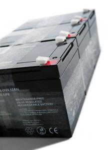 akkuteam Akkupack / Batteriepack Selbstbausatz für Tante Paula Elektroroller