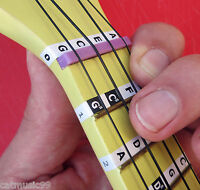 Beginners UKULELE MUSIC NOTE FRET STICKERS Children's Uke Label Decals + Lessons
