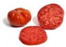30 BEEFSTEAK TOMATO SEEDS HEIRLOOM 2017 (non-gmo heirloom seed)