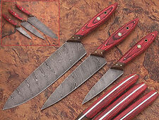 CUSTOM MADE DAMASCUS BLADE 3 Pc's. KITCHEN KNIVES SET. PZ-0046