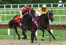 Other Horse Racing Memorabilia