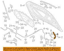 AUDI OEM 15-18 Q3 Hood-Hinge Left 8U0823301