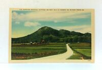 Toccoa Georgia Currahee Mountain From US Highway 123 Linen Vintage Postcard