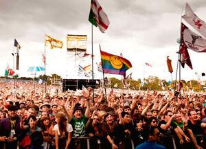Festival Flags - 5x3' & 3x2' - Hippie Marijuana Pirate Weed Drinking Unicorn