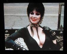 8x10 photo Elvira Mistress of the Dark #2, sexy movie star from a 1988 movie
