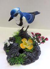 wunderschöner singender Vogel, zwitschert mit Bewegung, Sound + Geräuschsensor