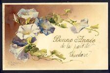 POSTKARTE Meissner & Buch Illustration Litho C. KLEIN BLUMEN FLOWERS IPOMOEA
