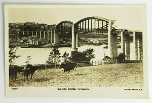 Vintage Real Photo Postcard Saltash Bridge Plymouth Cows in Foreground Unposted