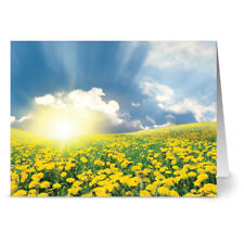 24 Spring Note Cards - A New Day - White Envs