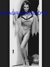 "Yvonne De Carlo ""The Munsters"" ""Busty"" ""Lily"" 60s TV Show ""Pin Up"" PHOTO! #(8b)"