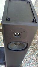 Definitive Technology Floor standing Speakers BP-6B Tower Loudspeaker Single,