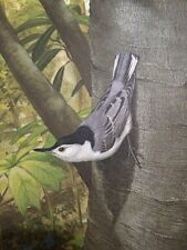 Ray Harm Limited Edition Signed Large Print White Breasted Nuthatch Rare Nice!