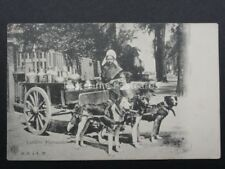 Belgium: Dog Cart - Laitière Flamande or Flemish Milkmaid c1902 UB by H.N.a A.