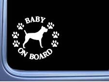 """Baby on Board Cane Corso L531 6"""" Sticker dog decal"""