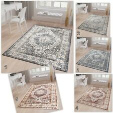 Traditional Area Rug Vintage Style Bedroom Quality Rug in Faded Grey Blue Cream