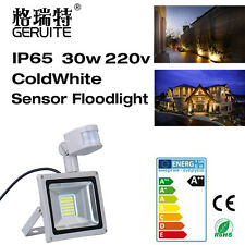30W LED Flood Light PIR Motion Sensor Outdoor Garden Spot Lamp 220V Waterproof