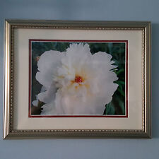 FLOWER PRINT Art Framed in Silver, Double Mat, Conservation Glass, NEW