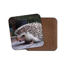 Adorable Hedgehog Backed Drinks Coaster - Cute Animal Kids Mum #8301