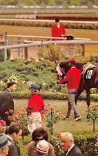 Aqueduct The Big A Long Island Racetrack 1960s Postcard  Paddock Horse Jockey
