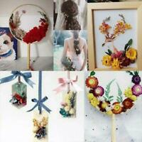1Box Dried Flowers Art DIY Craft Epoxy Resin Candle Home Decor Party G5Z6