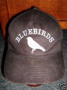 CLEVELAND BLUEBIRDS softball baseball hat youth Ohio