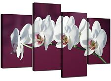 Large Plum White Floral Orchids Canvas Wall Art Prints Pictures 4116