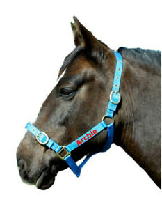 Personalised Embroidered Headcollars All Size & Colours  *SALE PRICE FROM £5.25*