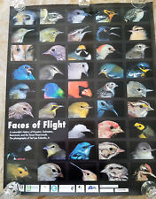 Faces of Flight - 43 portraits of Texas Birds -  Poster 27x34.5""