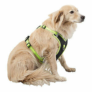3 Peaks Ascent Dog Harness Grey Small 53-62cm RRP £28
