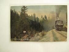 Postcard Paymaster Tree & RR on the Oregon Short Line Railroad, posted 1914