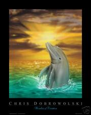 "NEW! Dolphin III 16x20"" Art Print Poster by Dobrowolski"