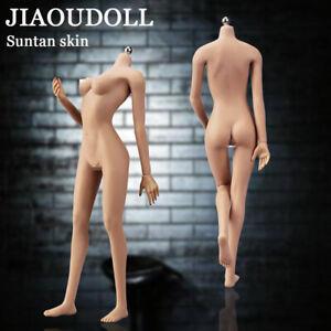 JIAOUDOLL Female Mid Breast Super Flexible Figure Model Suntan 1/6 for TBLeague