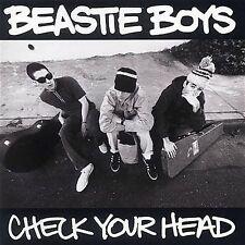 Beastie Boys, Check Your Head, Excellent Explicit Lyrics