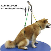 Stainless Steel Grooming Loop Table Arm Body Holder Rope Harness for Pet Dog