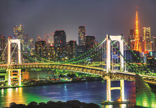 1000Piece Jigsaw Puzzle Rainbow Bridge Tokyo Tower Hobby Home Decoration DIY