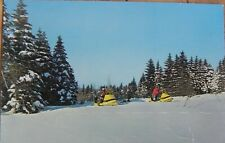 Vintage Snowmobiling in Winter Wonderland Minnesota Postcard