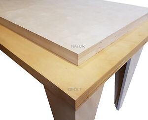 45mm Werkbankplatte 120€m² Werktisch Arbeitstisch Arbeitsplatte Tischlerplatte