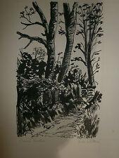 Encre André Scheterne tableau chemin forestier