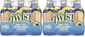 Nature's Twist Sugar Free Blueberry Lemon 16 oz 6 Bottle Pack 2 Pack