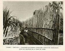 TONKIN TIEN YEN PALISSADE BAMBOUS PROTECTION TIGRE IMAGE 1939 OLD PRINT