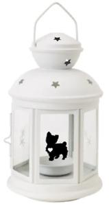 Yorkshire Terrier, gift,white ,dog, anniversary, garden, indoor, Xmas, birthday